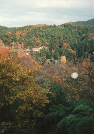 The Yoshino Mountains in Autumn